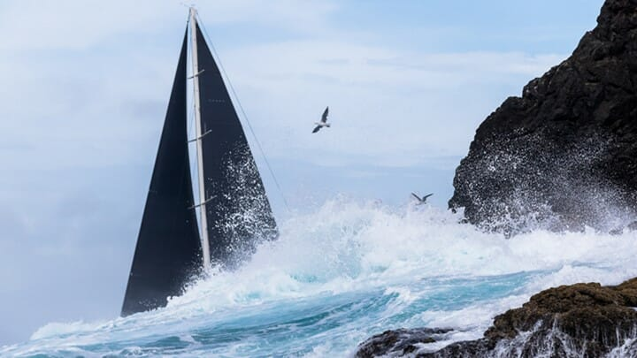 action at the New Zealand Millennium Cup marks a return to normalcy